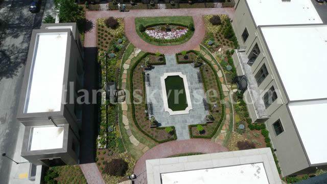 gardenoverview